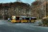 Bus ved Marienlund